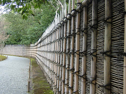 Living Fence Bamboo living bamboo fence how to make fence tips